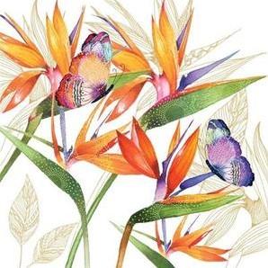 PPD Serviet 25x25 Parrot Flower